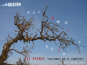 IIIPicNicBokACCION