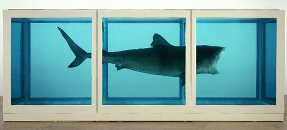 Tiburón-Hirst